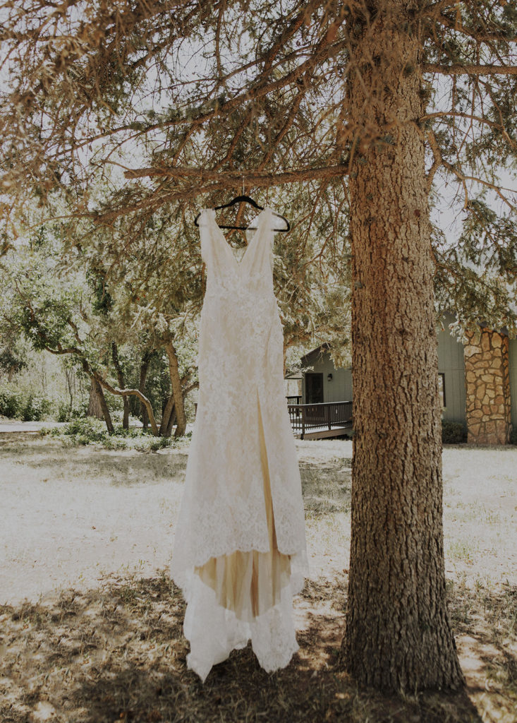 wedding dress hanging from a tree. Tips for finding the perfect wedding dress