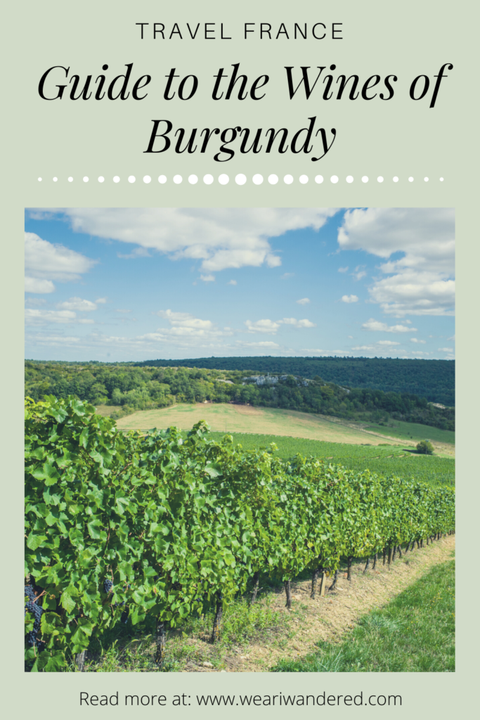 Beginners Guide to the Wines of Burgundy