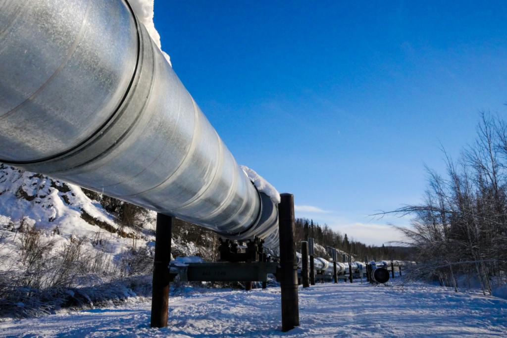 Photo of the oil pipeline just outside of Fairbanks, Alaska.